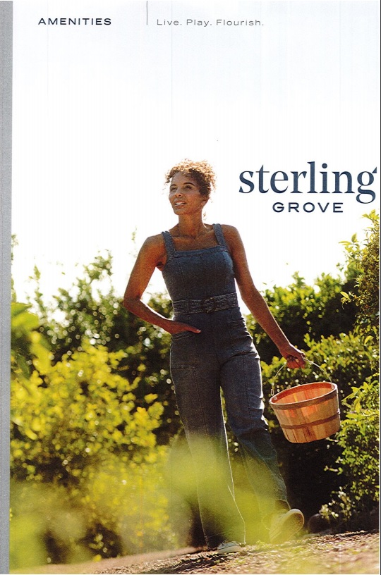 STERLING GROVE AMENITIES GENERAL INFORMATION